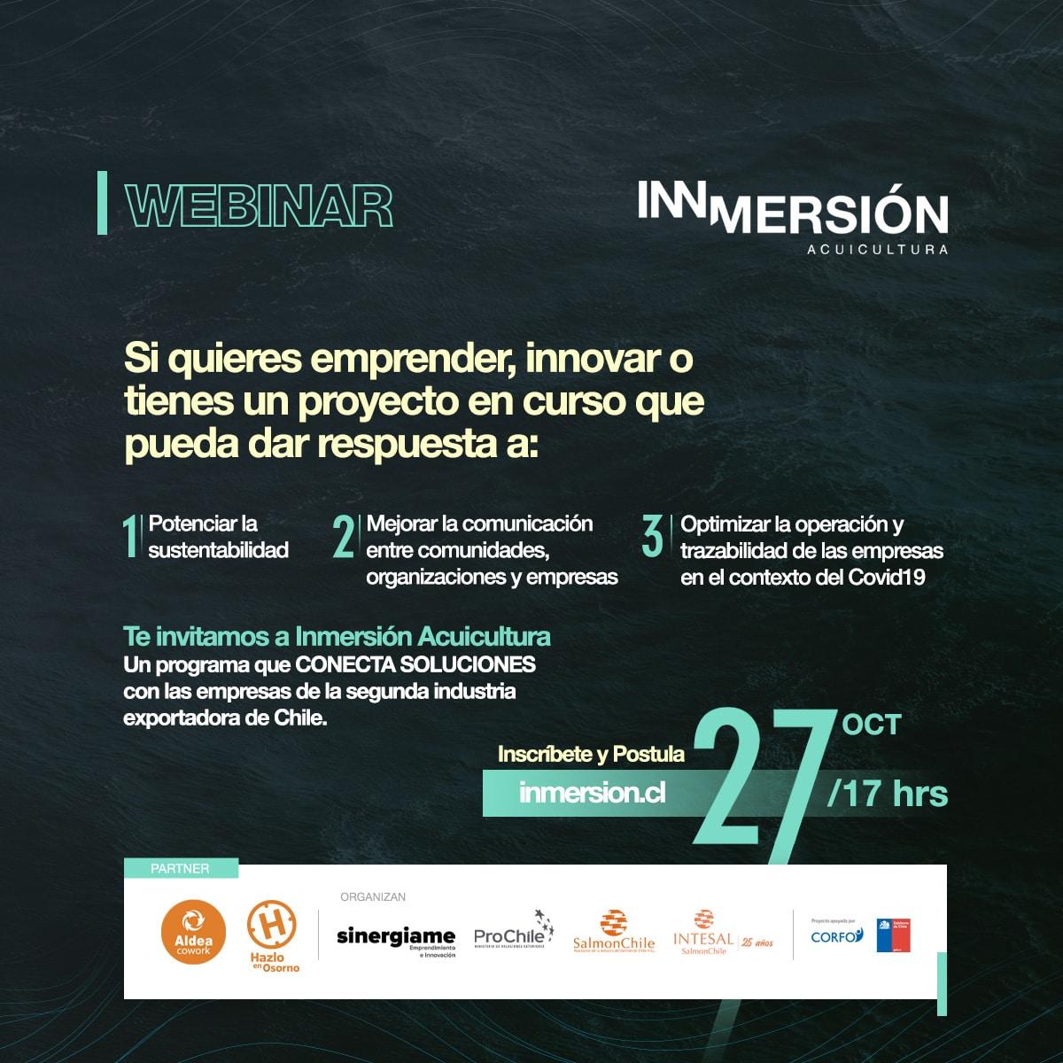 Webinar Explicativo Programa Inmersión (Provincia de Osorno)